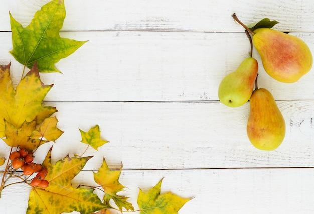 Couleurs d'automne feuilles jaunes baies orange poires parfumées copie espace