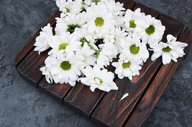 Couleurs de camomille sur un fond en bois. printemps. cosmétique naturel. le concept de médecine naturelle. mise à plat.