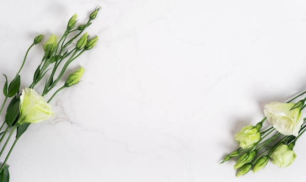 Couleurs vertes fraîches sur une table en pierre naturelle, fond de marbre blanc avec espace de copie, mise à plat, vue de dessus.