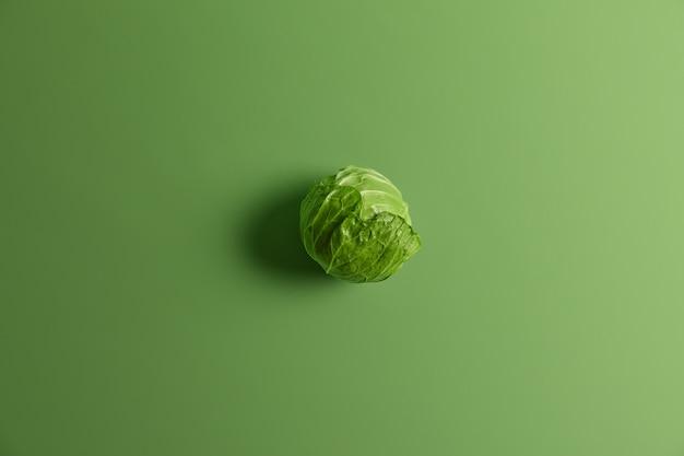 Coup ci-dessus d'une tête ronde de chou naturel biologique isolé sur fond vert. gros plan monochrome horizontal. ingrédient naturel frais pour faire de la salade ou du borsh. concept de nutrition saine