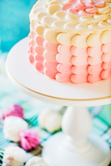 Coup de macro d'un délicieux gâteau sur le plat de cuisson