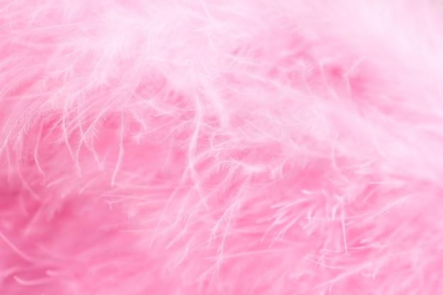 Coup de macro de plumes moelleuses d'oiseaux roses dans un style doux et flou