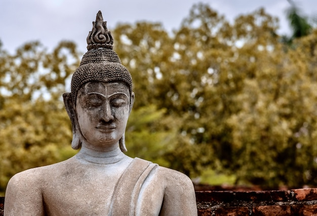 Coup de mise au point peu profonde d'une vieille statue de bouddha