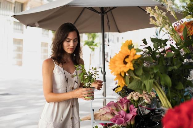 Coup moyen femme tenant un pot de fleur