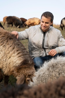 Coup moyen homme caressant les moutons