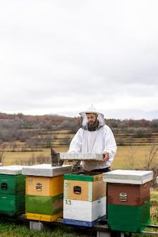 Coup moyen homme travaillant avec les abeilles