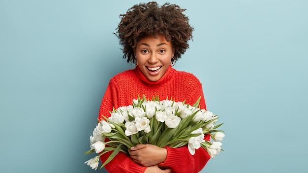 Coup de taille d'une femme afro-américaine heureuse sourit joyeusement, porte un pull rouge tricoté, embrasse un bouquet de fleurs blanches, des modèles sur un mur bleu. des gens, de bonnes émotions et de bons sentiments. recevoir des tulipes