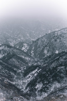 Coup vertical de montagnes couvertes de neige blanche en hiver