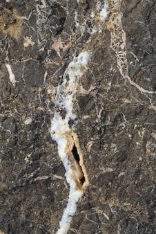 Coup vertical de la surface des roches