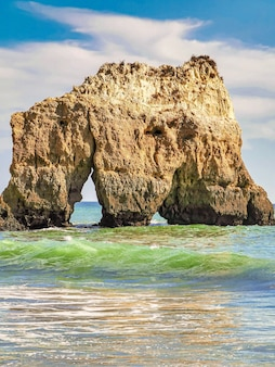Coup vertical de vagues passant par un gros rocher