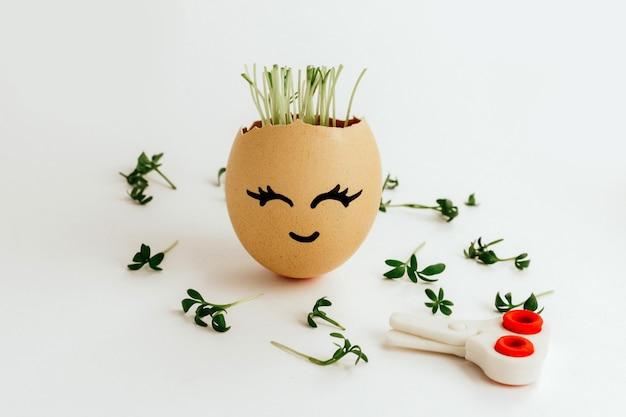 Une coupe de cheveux réussie. oeuf de poule brun avec un joli visage peint avec des semis à l'intérieur et à l'extérieur.
