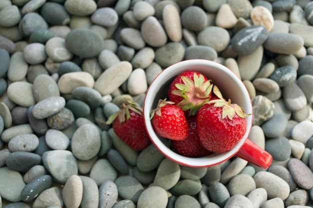 Coupe avec des fraises fraîches sur un fond de galets de mer gris