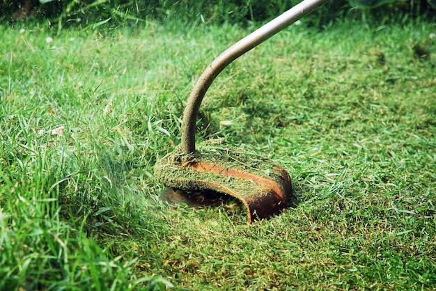 Coupe-herbe à main tondre la pelouse