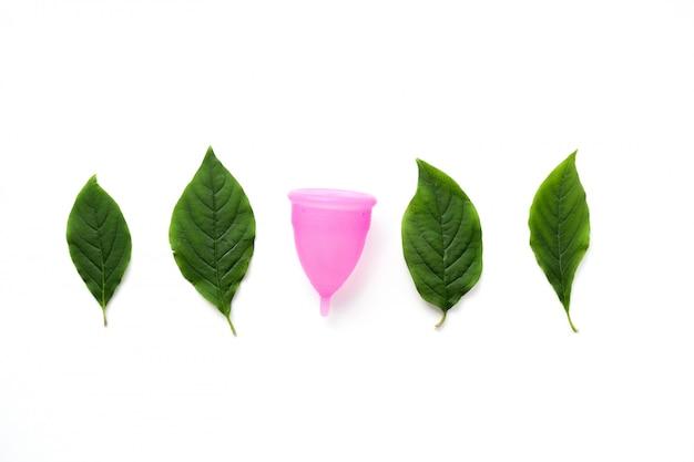 Coupe menstruelle réutilisable et feuilles vertes isolés sur blanc