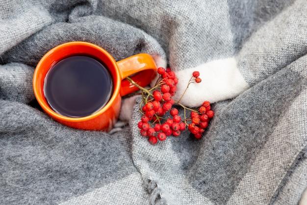Coupe orange avec du thé dans un plaid. à côté de la tasse est un orage. homeliness.