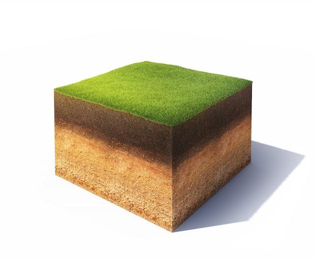 Coupe transversale du sol