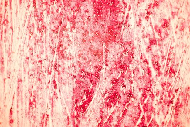 Coupe transversale du tissu humain dans la vue du microscope.