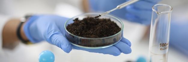 Coupe en verre avec échantillon de sol se tient à portée de main dans un gant en caoutchouc en gros plan de laboratoire de chimie analyse biochimique du concept de sols.