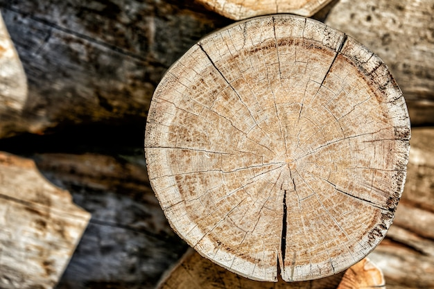 Couper des bûches de bois