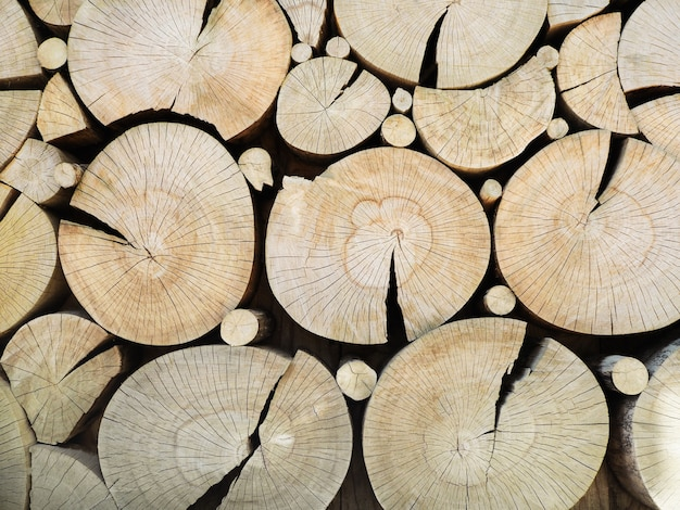Couper le modèle de troncs en bois. mur décoratif avec des souches d'arbres rondes