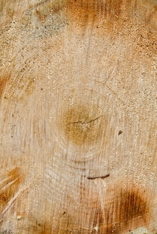 Couper la texture de fond en bois de journal.