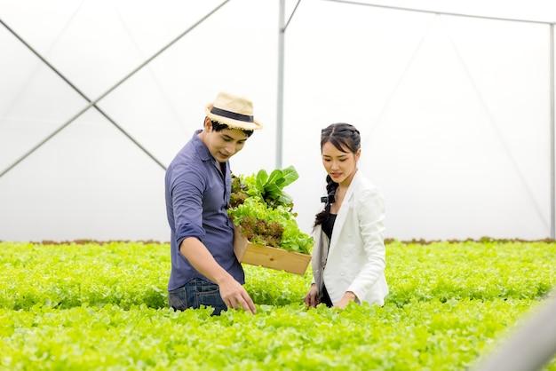 Un couple d'agriculteurs asiatiques travaille dans une serre de légumes hydroponiques avec bonheur et joie dans une rangée de plantes en arrière-plan