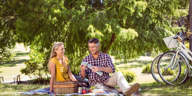 Couple ayant un pique-nique dans le parc