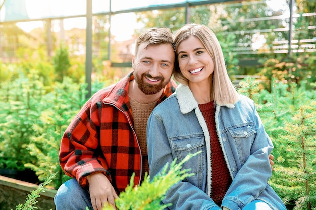 Couple choisissant l'arbre de noël en serre