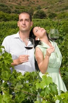 Couple dégustant du vin de leurs caves dans un vignoble