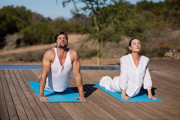 Couple effectuant le yoga en vacances de safari
