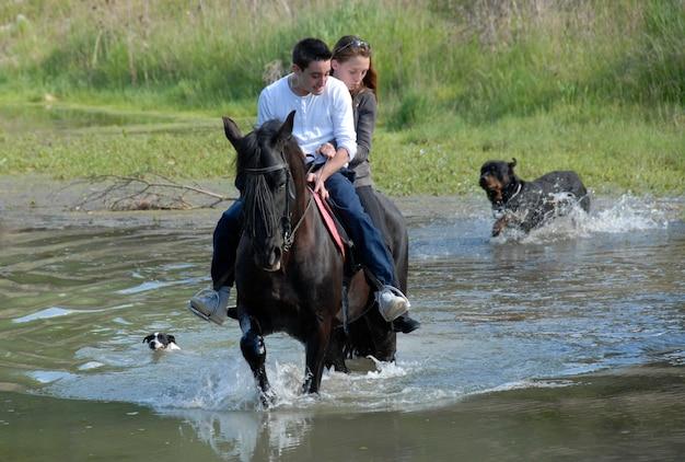 Couple d'équitation dans une rivière avec des chiens