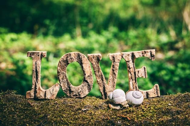 Un couple d'escargots et l'amour écrit debout sur le tronc en bois.