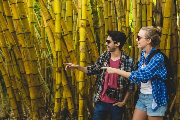 Couple, exploration, bambou, forêt