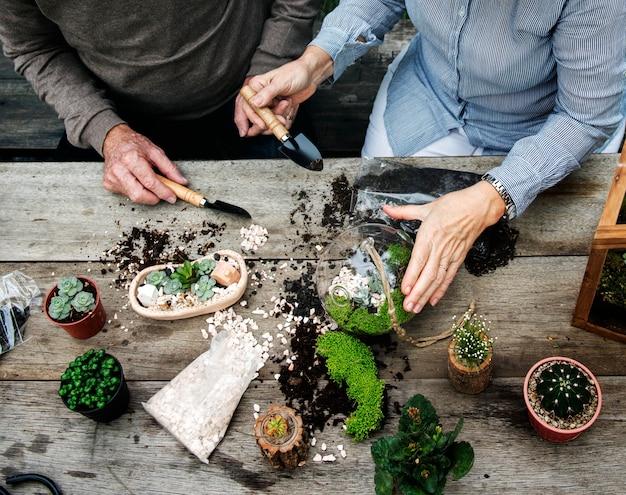 Couple faisant un terrarium avec des plantes miniatures