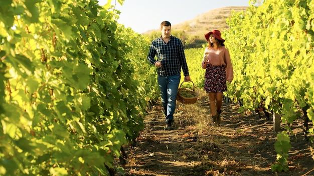 Couple marchant dans un vignoble avec des verres de vin dans les mains. l'homme porte une corbeille de raisins.