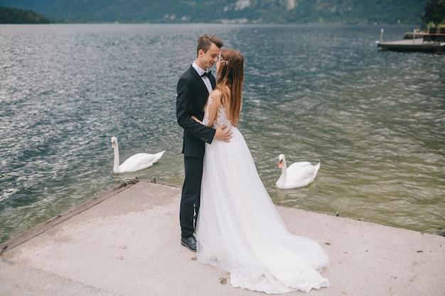 Couple, mariage, poser, cygnes, fond, lac, montagnes, autriche