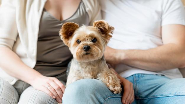 Couple marié et leur chien