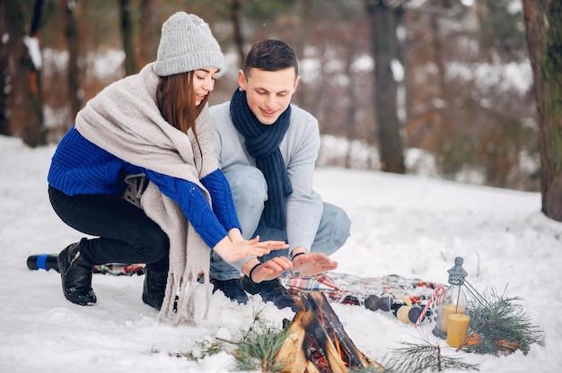 Couple mignon et affectueux dans une forêt d'hiver