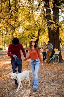 Couple multiracial marchant avec chien en automne parc