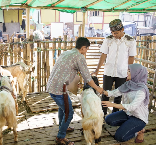 Couple musulman à la ferme de commerce des animaux acheter une chèvre pour la cérémonie du sacrifice de l'aïd adha