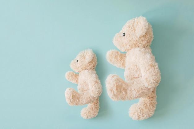 Couple ours en peluche marchant, poupée de couple doux