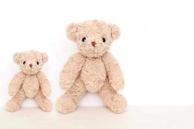Un couple d'ours en peluche mignon