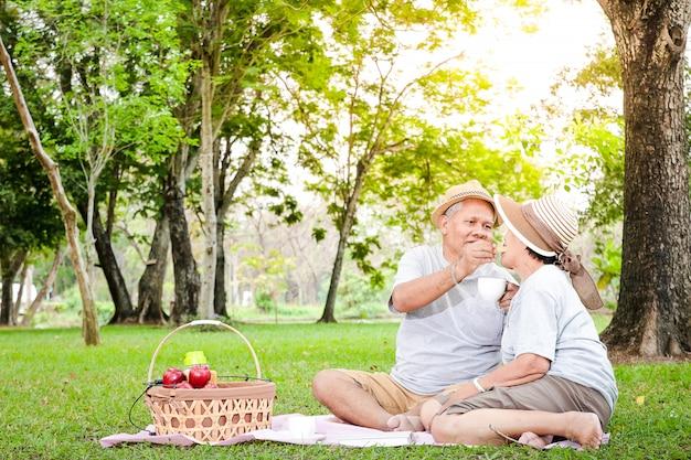 Couple de personnes âgées asiatiques ayant un pique-nique dans le parc