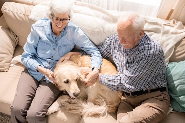 Couple de personnes âgées heureux avec animal de compagnie