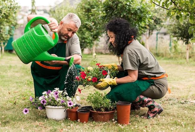 Couple de personnes âgées s'occupant des fleurs