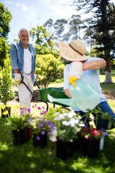 Couple de personnes âgées travaillant ensemble dans le parc