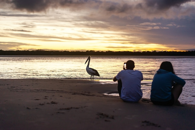 Couple sur la plage au coucher du soleil en prenant une photo d'un pélican.