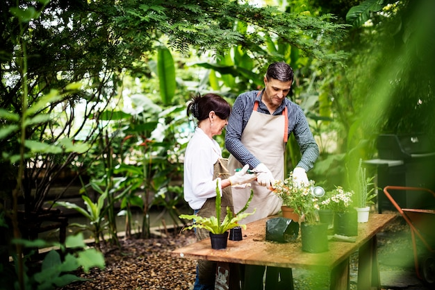 Couple plantant des fleurs ensemble dans le jardin