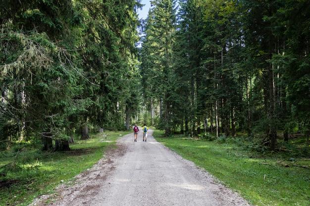 Couple en randonnée dans une forêt en slovénie dans le parc national du triglav