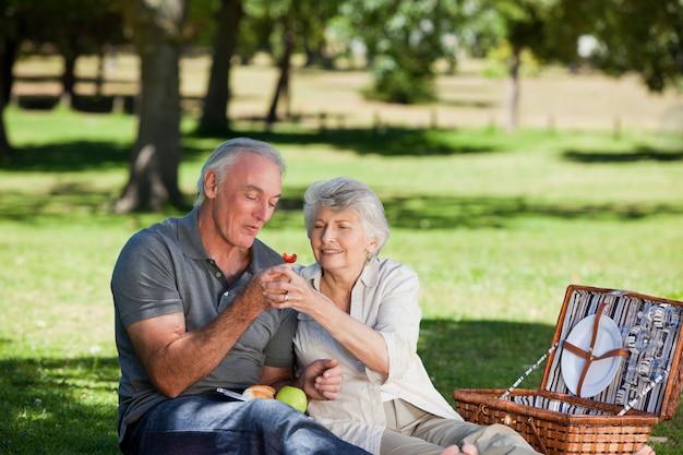 Couple de retraités pique-nique dans le jardin